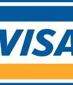 Visa/Vanilla/Master Gift Cards